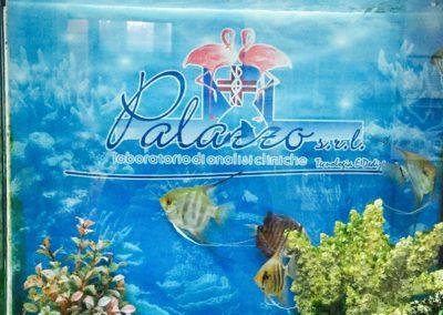 palazzo-analisi-acquario